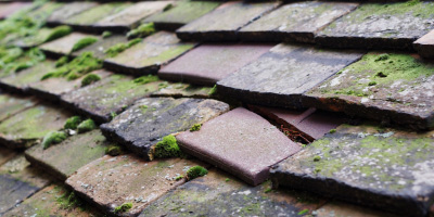 Winchenford roof repair costs